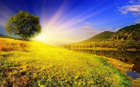 beautiful summer backgrounds  images