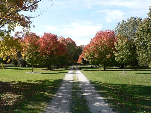 Hawthorne Hollows Road