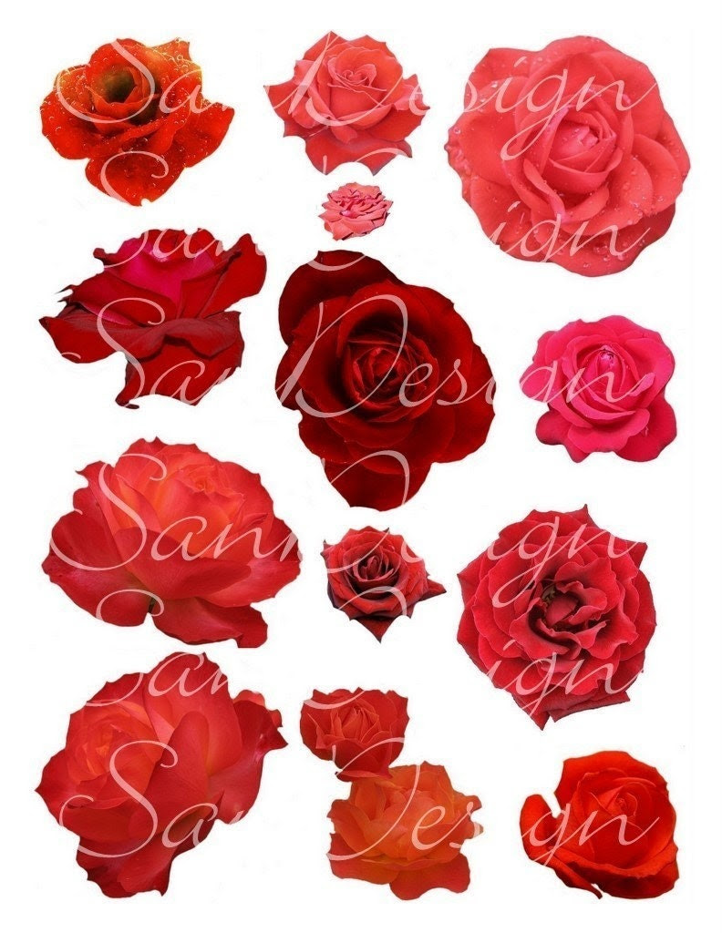 Red Roses Digital Collage Sheet No. 47