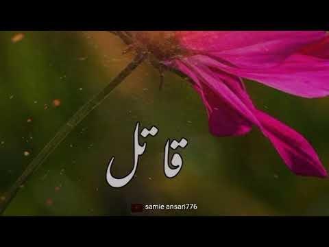 islamic video | bayan new | mustafai bayan | saqib raza mustafai | sandeel info