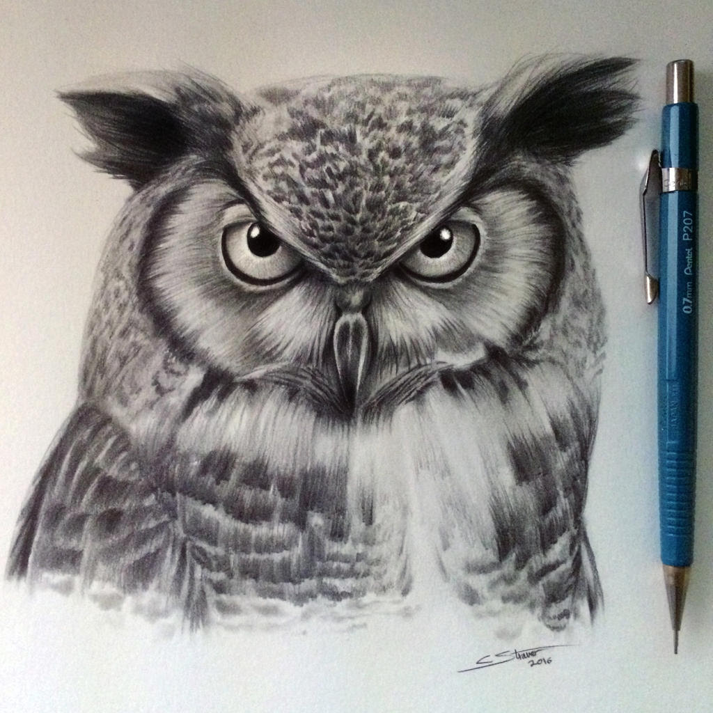 Owl Drawing by LethalChris on DeviantArt