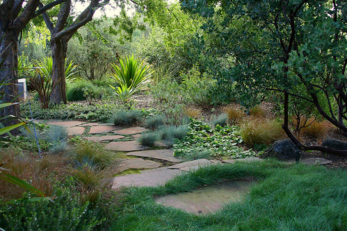 lawn and plantings