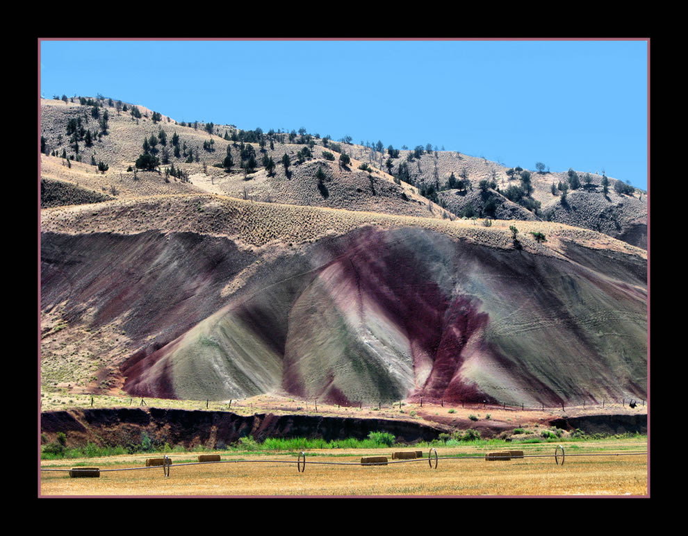 Purple in the Hills - Painted Hills