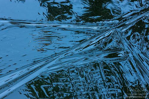 Ice Texture, Frozen Pond, Snohomish County, Washington
