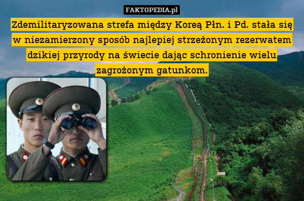 Zdemilitaryzowana strefa między – Zdemilitaryzowana strefa między Koreą Płn. i Pd. stała się w niezamierzony sposób najlepiej strzeżonym rezerwatem dzikiej przyrody na świecie dając schronienie wielu zagrożonym gatunkom.