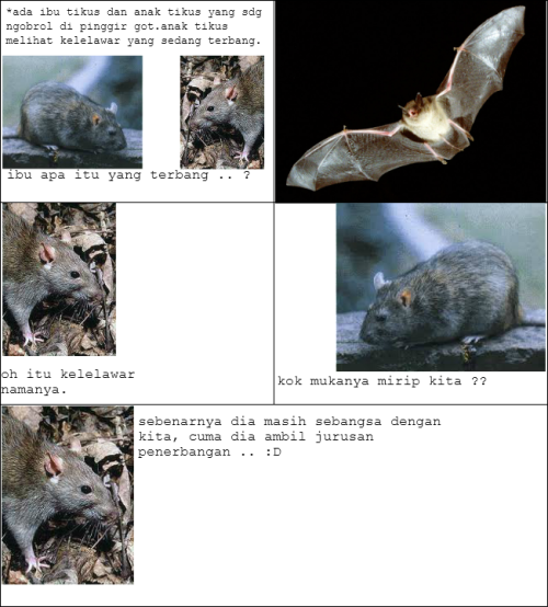 Kekerabatan Kelelawar vs Tikus !
