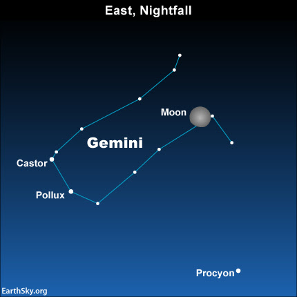 2015-enero-31-gemini-castor-pollux-procyon-luna-noche-cielo-chart
