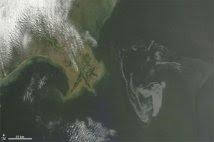 Chiazza nel Golfo Messico
