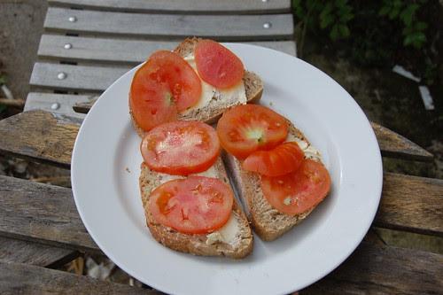 tomato breakfast