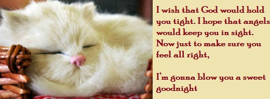 I Wish That God Would Hold You Tight Good Night Quote