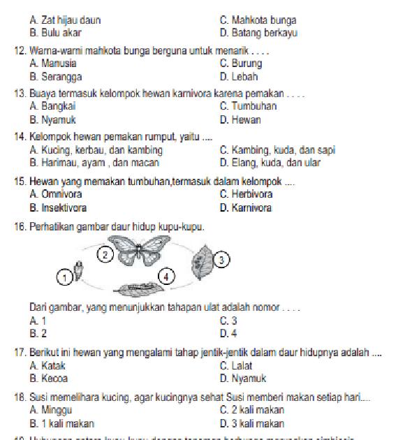 Jawaban Pr Tematik Hal 79