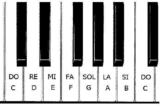 Las Notas Musicales Las Teclas Blancas El Club Del Autodidacta