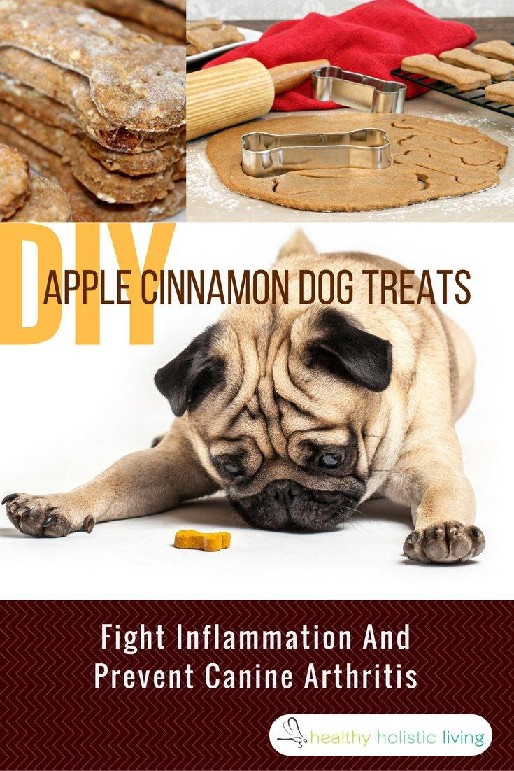 Healthiest Dog Treats That Fight Off Pain and Arthritis You Can DIY
