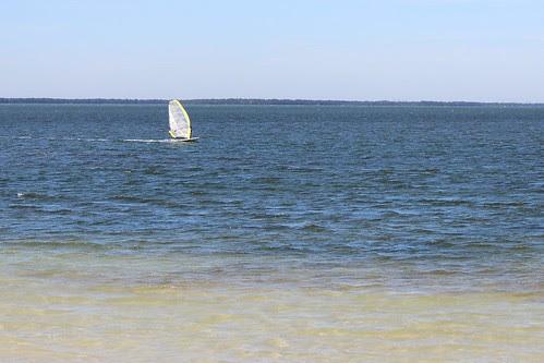 IMG_3864_Wind_Sailing