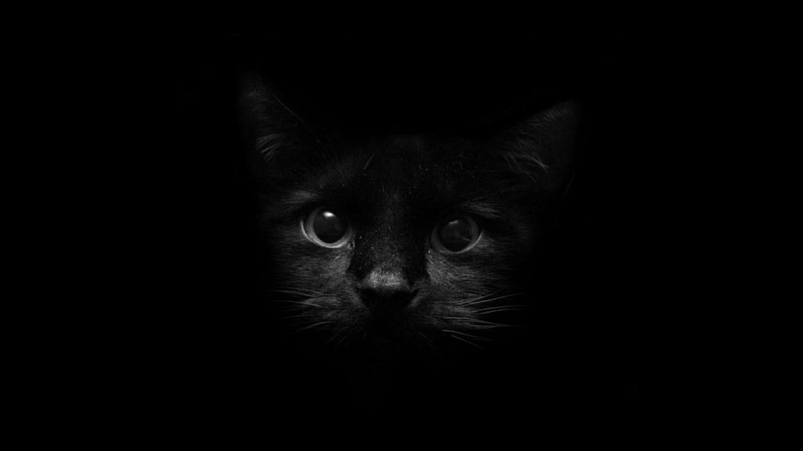 Black Wallpaper For Desktop Sudingfamily
