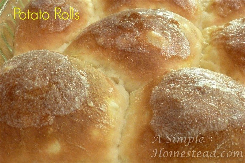 potato rolls - baked closeup(3)