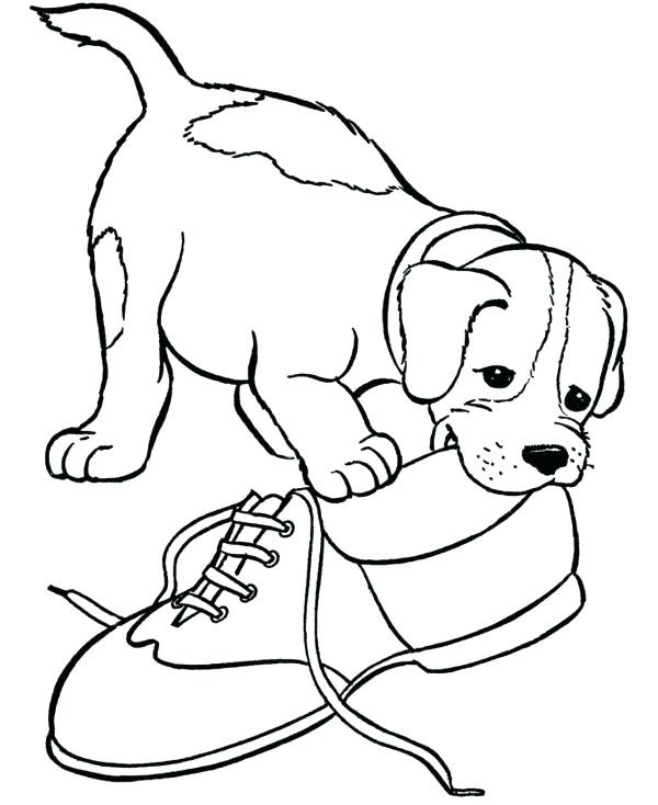 Newborn Puppy Baby Puppy Coloring Pages Newborn Baby