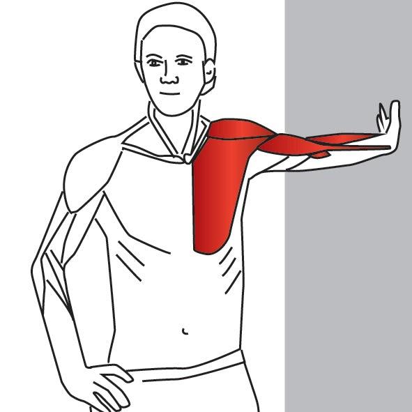 гимнастика для плеча картинки снимает