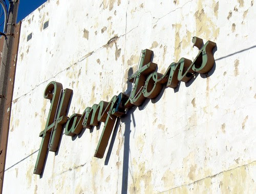 hampton's neon close up