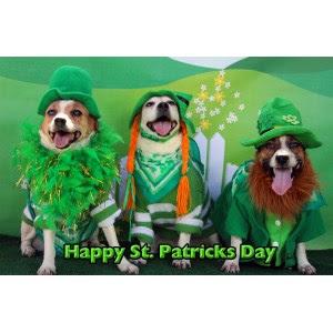Plush Happy St Patrick Kane Day Hockey Meme Happy Saint Patrick S