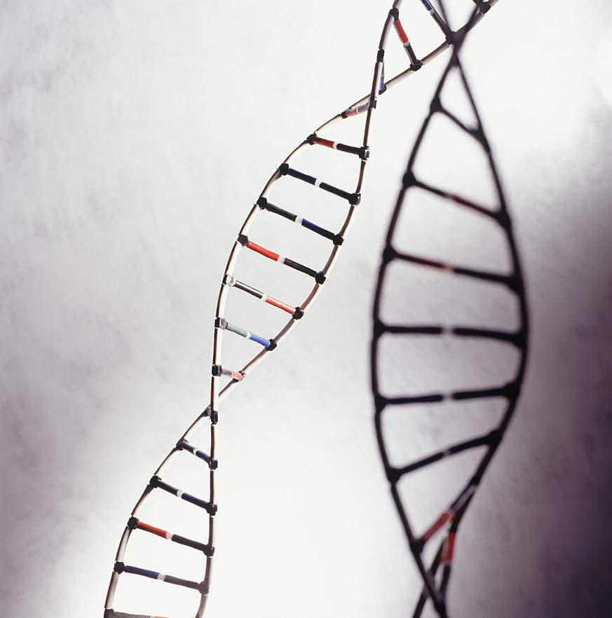 Stock image of DNA