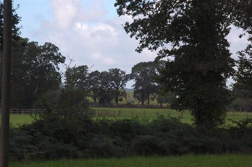 25 acres