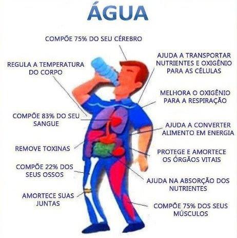 Resultado de imagem para beba água