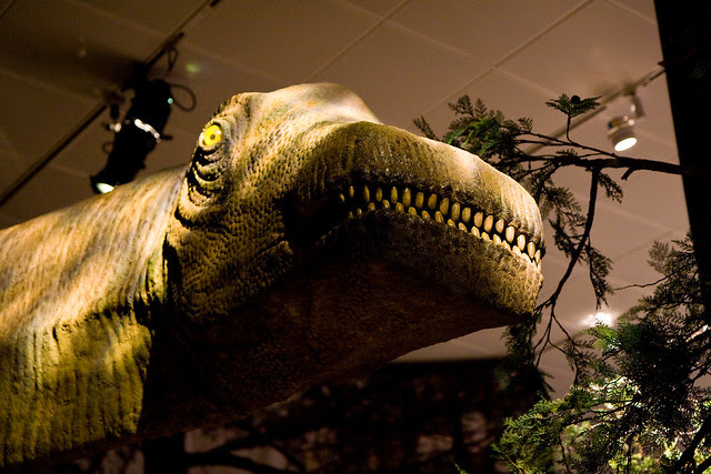 World's Largest Dinosaurs at the American Museum of Natural History