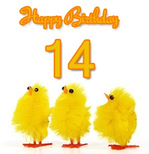 14th Birthday Wishes And Messages
