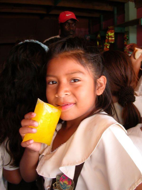 Belize Juice Box