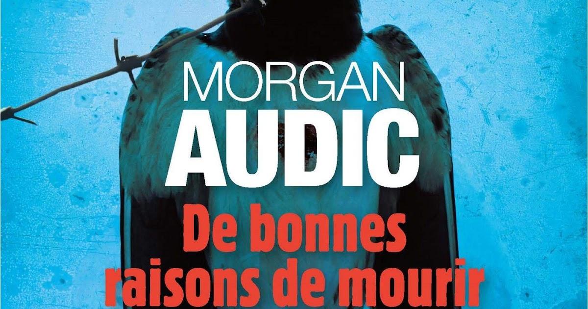 """Résultat de recherche d'images pour """"couverture morgan audic albin michel"""""""