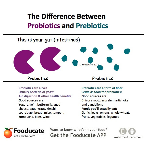Probiotics-vs-Prebiotics-Graphic