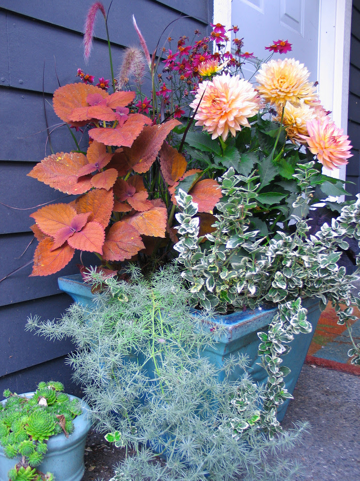 Beautiful Fake Flower Arrangementsin Landscape Traditional With Gorgeous Shady Areas Landscaping Ideas Next To Alluring Covered Patio Alongside Cute Large Container Planting Ideas And Prepossessing Popular Exterior House Colors