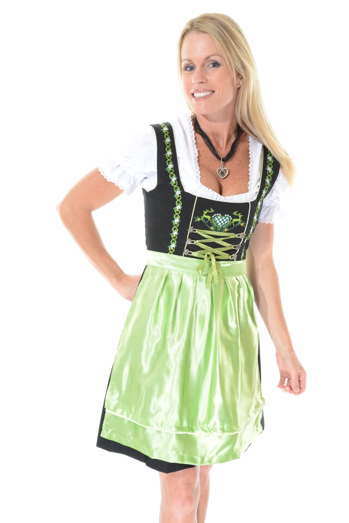 dirndl  dirndls  dirndl dress  drindl  dirndle