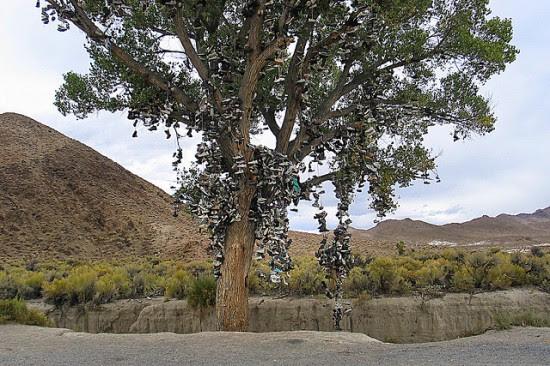 Perierga.gr - Το δέντρο με τα παπούτσια