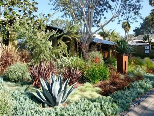 Pin by Rachel Mathews on Front Garden Ideas | Pinterest