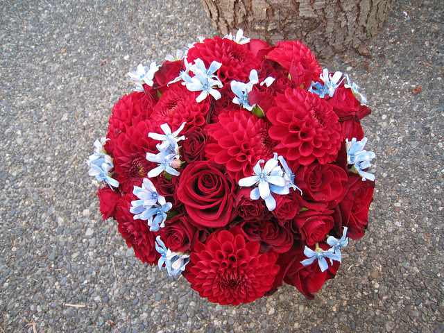 Amazingly beautiful bright red with light blue wedding bouquet made up of