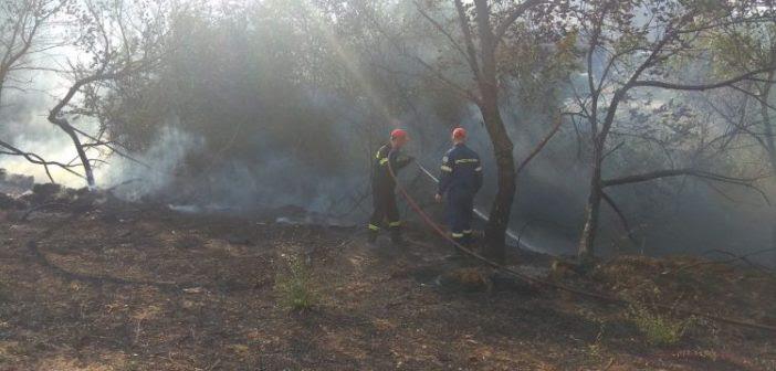 Πυρκαγιά δίπλα στην περίφραξη του νοσοκομείου Αγρινίου (ΔΕΙΤΕ ΦΩΤΟ)