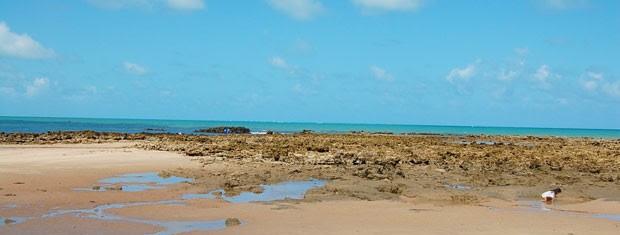 Praia de Carapibus na Paraíba (Foto: Inaê Teles/G1)