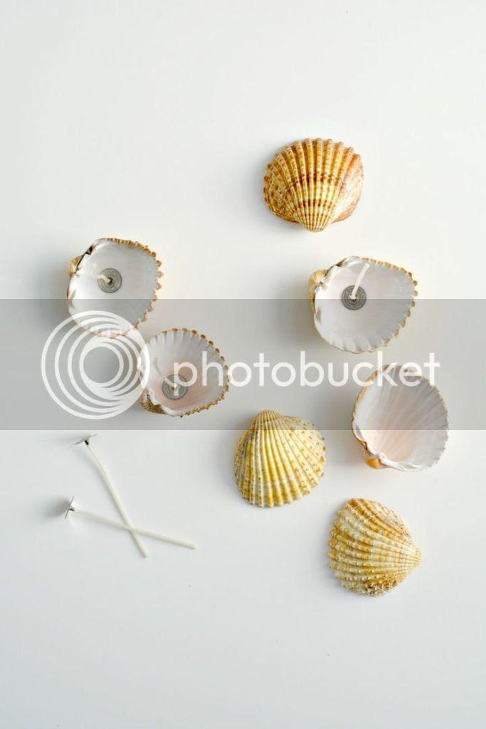 photo shell tealights2_zpsrajsvgcm.jpg