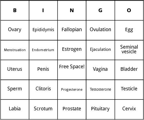 Human Reproduction bingo by Bingo Card Template