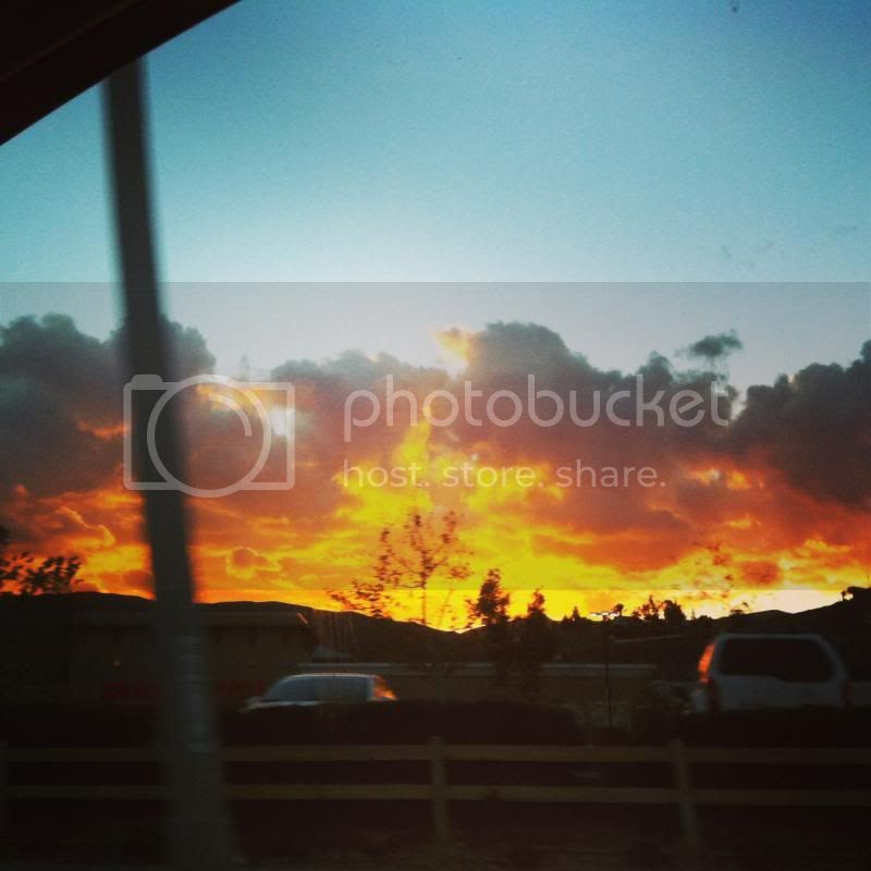 photo IMG_8427_zps3b9c3d05.jpg