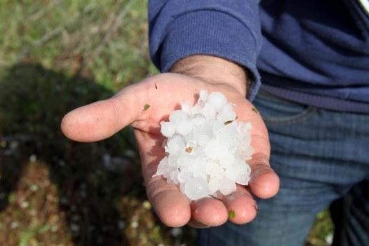 Χιλιάδες στρέμματα κατέστρεψε το χαλάζι στον Έβρο