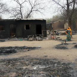 Gli estremisti «hanno completamente bruciato sedici villaggi e la città di Baga». (Afp)