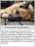 photo GermanShepherdproblems-6a_zps4d2a564e.jpg