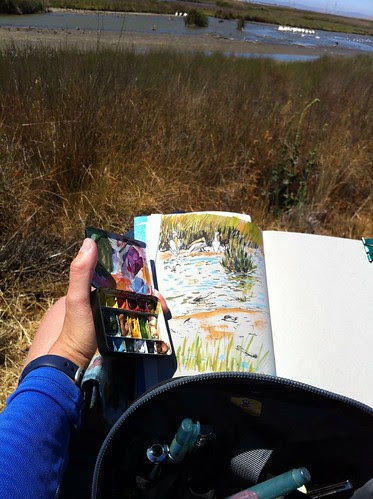Windy Day Sketching in Shoreline by apple-pine