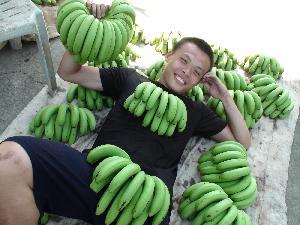 來當個香蕉葛格