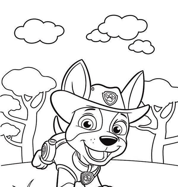ausmalbilder mighty pups everest  ausmalbild paw patrol