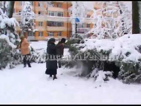 """[VIDEO] Intelectualii, """"voluntari"""" de nevoie la curăţat zăpada din parc"""