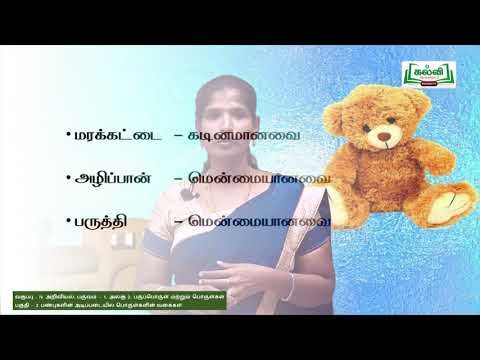 4th Science பருப்பொருள்கள் மற்றும் பொருள்கள் அலகு 2 பகுதி 2 Kalvi TV